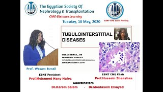 Tubulointerstitial Diseases (English and Arabic), Prof  Wesam Ismail, 18 May 2020