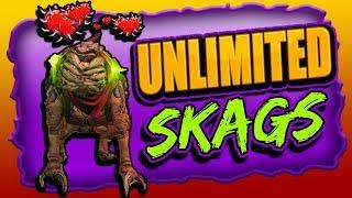 How To Have 6 SKAG PETS  (Duplicate Skags Glitch) FL4k - BORDERLANDS 3