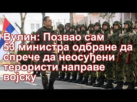 Ministar odbrane Aleksandar Vulin uputio je pisma ministrima odbrane 53 zemlje u kojima ih je pozvao da spreče formiranje vojske Kosova.