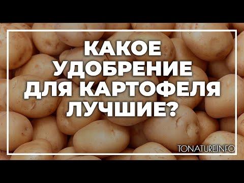 Какое удобрение для картофеля лучшие? | toNature.Info