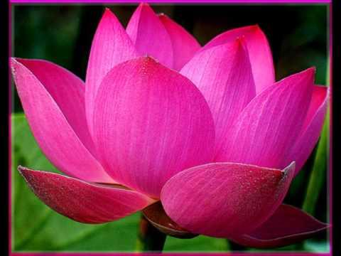 106/143-Luận Đại Thừa Trăm Pháp (tt)-Phật Học Phổ Thông-HT Thích Thiện Hoa