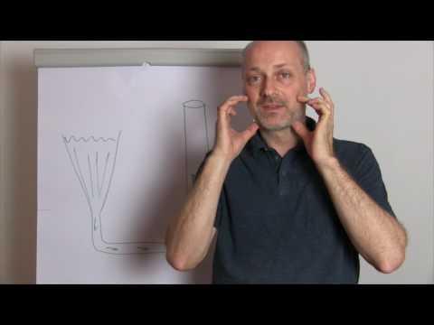 Struktur und Funktionen der menschlichen Gelenke