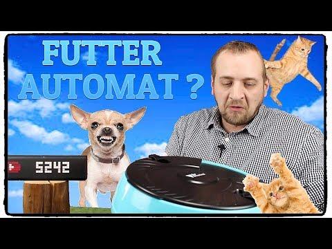 FUTTERAUTOMAT KATZEN / HUND ⭐TEST / REVIEW / DEUTSCH