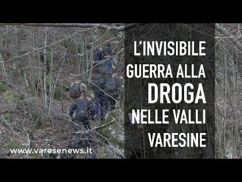 L'invisibile lotta alla droga nella valli di montagna