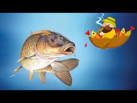Веселые рыбаки (fun-fishermen.org) отзывы 2019, обзор, mmgp, обновления, получил выплату 32,55 руб