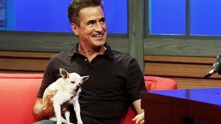 Meet Dermot Mulroney's 22-Year-Old Chihuahua!