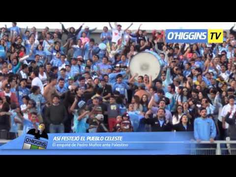 """Celebración hinchada O'Higgins 1 - 1 Palestino"" Barra: Trinchera Celeste • Club: O'Higgins"