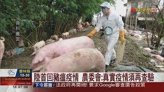 【非凡新聞】非洲豬瘟爆發半年 中國首度回覆疫情資訊