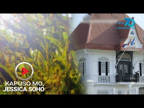 [GMA]  Kapuso Mo, Jessica Soho: 'Mossy Forest' at Aguinaldo Shrine, nababalot umano ng hiwaga?