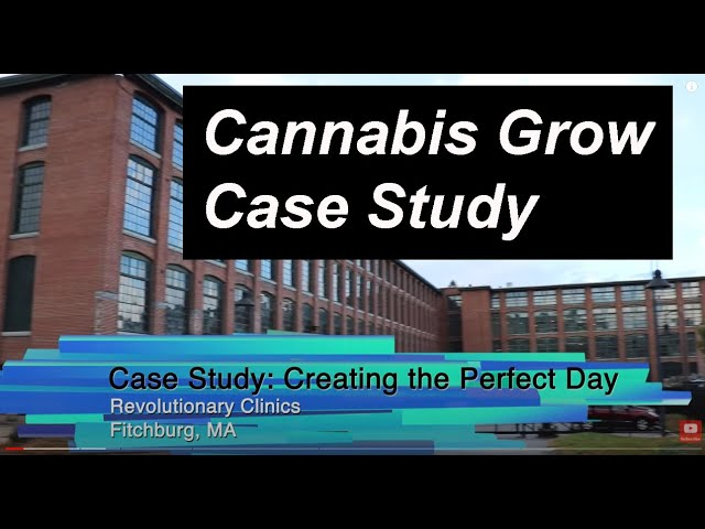 "Desert Aire ""Creating The Perfect Day"" Grow Room Case Study Video"