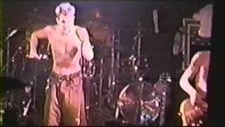 """311-""""PLAIN"""" 8-24-1995 TREES (RARE)"""