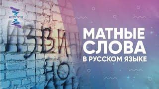 Матные слова в русском языке. Ответы на вопросы. Вячеслав Юнев