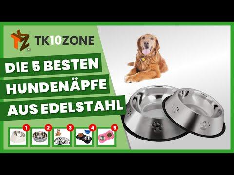 Die 5 besten Hundenäpfe aus Edelstahl