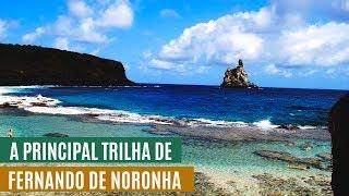 Conheça a trilha mais famosa de Fernando de Noronha