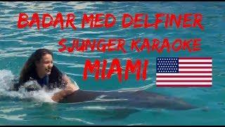 Badar Med Delfiner, överraskar Min Bästakopmis, Miami Vlogg 3