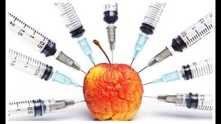 What are the Disadvantages of genetically modified organisms (GMOs) and their adverse effects