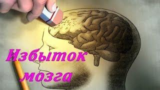 Украинцам становятся не нужны химия, физика и т.п.