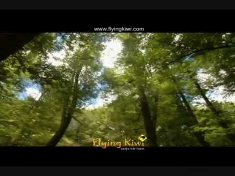 Video of Flying Kiwi New Zealand Tour