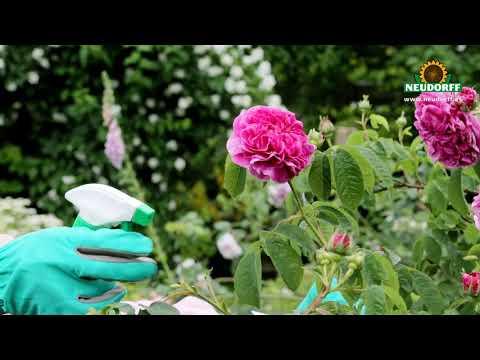 Insecticida-acaricida Spruzit (piretrinas) listo uso 500ml