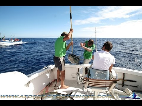 Our friend Sacha from Switzerland catch 4 big Eye tunas for the first time in its life !!!