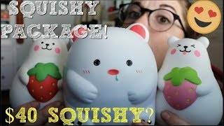 DELITEFUL BOUTIQUE SQUISHY PACKAGE!!! NEW BEAR SQUISHIES