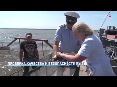 Управление Россельхознадзора провело мониторинг рыбоводного хозяйства в Ростовской области