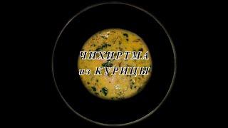 Чихиртма ✧ Куриный Суп ✧ Грузинская Кухня