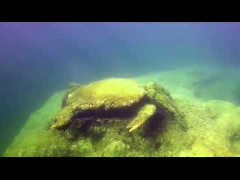 Friedberger Baggersee - Andrés Tauchvideos , Friedberger See,Bayern,Deutschland