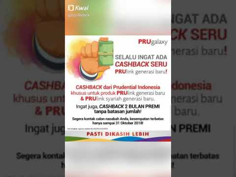 Financial consultant prudential