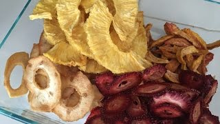 How To Dehydrate Fruit - Excalibur Food Dehydrator Review
