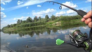 Рыбалка на дереве коннор лейн