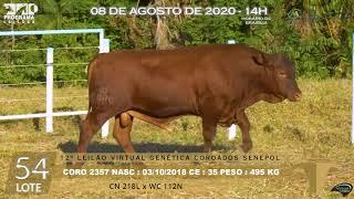 Coro 2357 b4 fiv