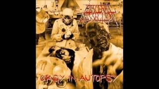 VISCERAL DISSECTION-Orgy in autopsy (feat.GINGER)