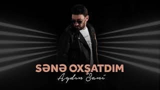 Aydın Sani - Sənə oxşatdım