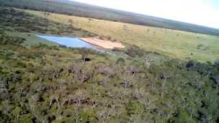 Olhando o Gado de Helicóptero. Chaco Paraguai!