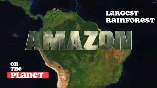 The Amazon Rainforest - Origin and Destiny