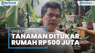 Rezeki di Tengah Pandemi, Kisah Warga Depok Barter Tanaman dengan Satu Unit Rumah Harga Rp500 Juta