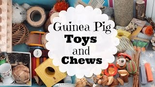 All MY GUINEA PIG TOYS AND CHEWS! | Hamster HorsesandCats