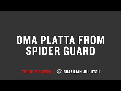 Oma Platta From Spider Guard