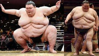 СУМОИСТ – МУТАНТ весом 300кг! История самого тяжелого борца на планете