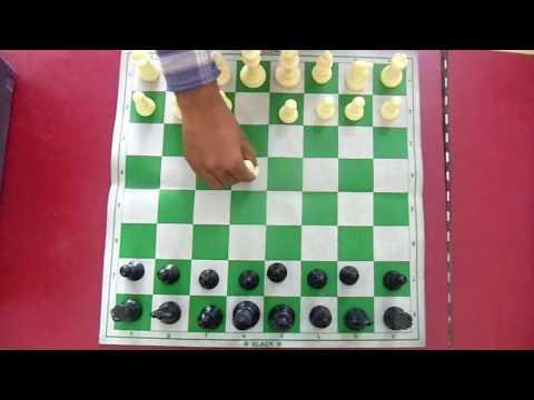 chess hindi tips all