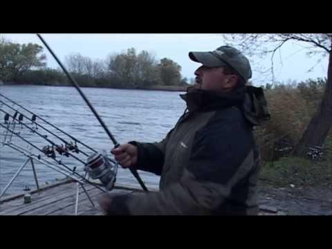 Ryby, rybky, rybičky – 1/2014, premiéra 3.1.2014
