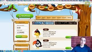 Заработок на яйцах. Money-Birds.one обзор новой игры для заработка