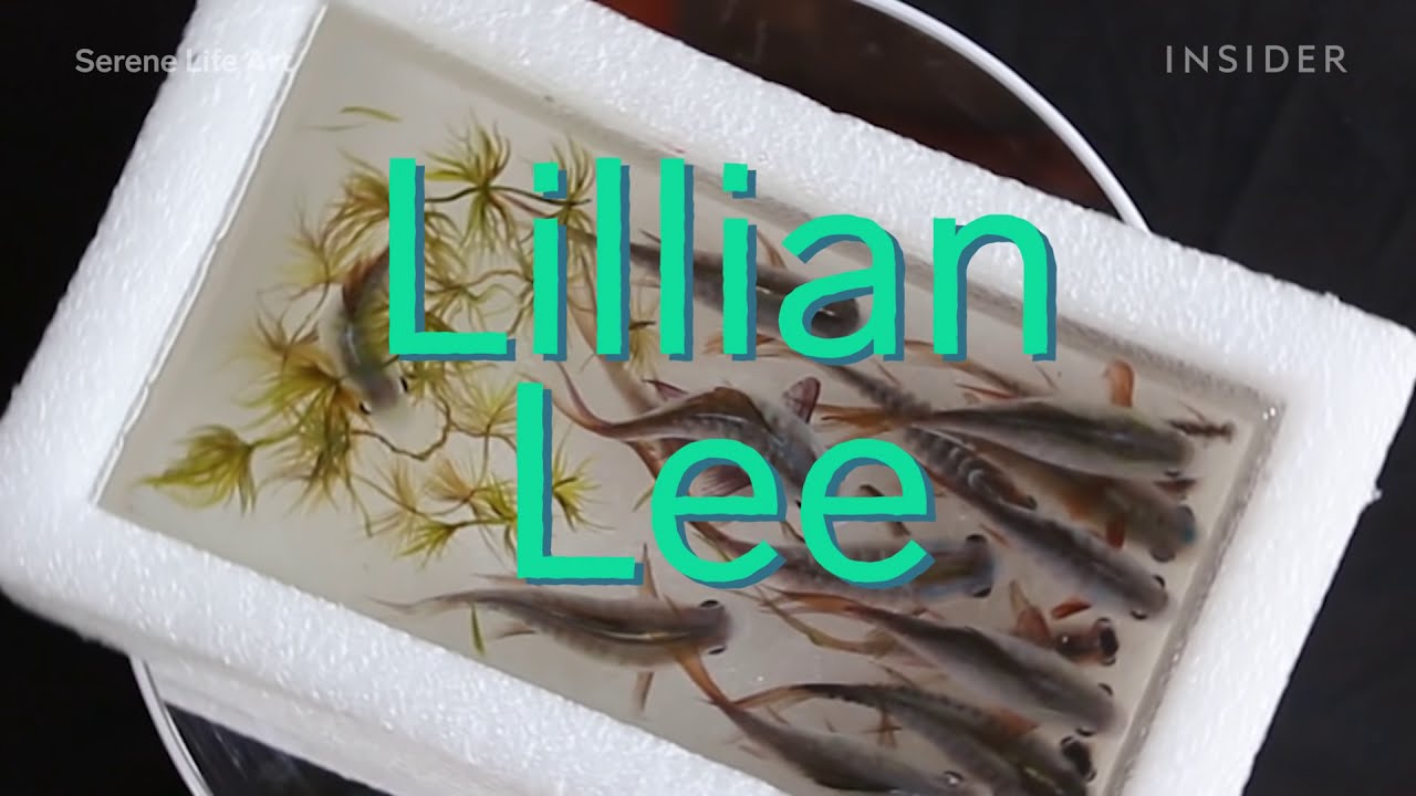 making lifelike 3d aquariums with paint cast in resin