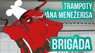 Trampoty Pána Menežerisa 03 - Brigáda