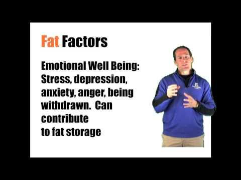 Fat Factors