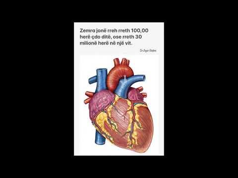 Një rënie të mprehtë në presionin e gjakut dhe zalisur
