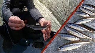 Озера кисегач челябинской области зимняя рыбалка