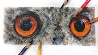 How To Draw OWL EYES | Colored Pencil Tutorial
