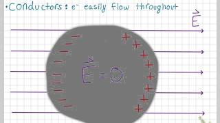Conductors in Electric Fields